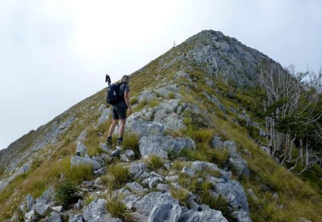 ultimo tratto del sentiero verso la vetta del monte altissimo