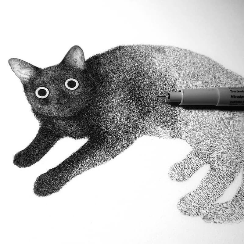 12-Luis-Coelho-Ink-Animal-Drawings-Cats-and-More-www-designstack-co