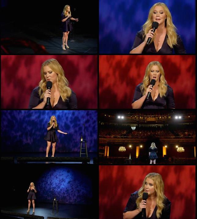 Amy Schumer Live at the Apollo 2015 English DVDRip 450MB
