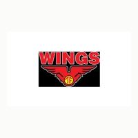 Lowongan Kerja Terbaru Mei 2021 di PT Tirta Alam Segar (Wings Group)