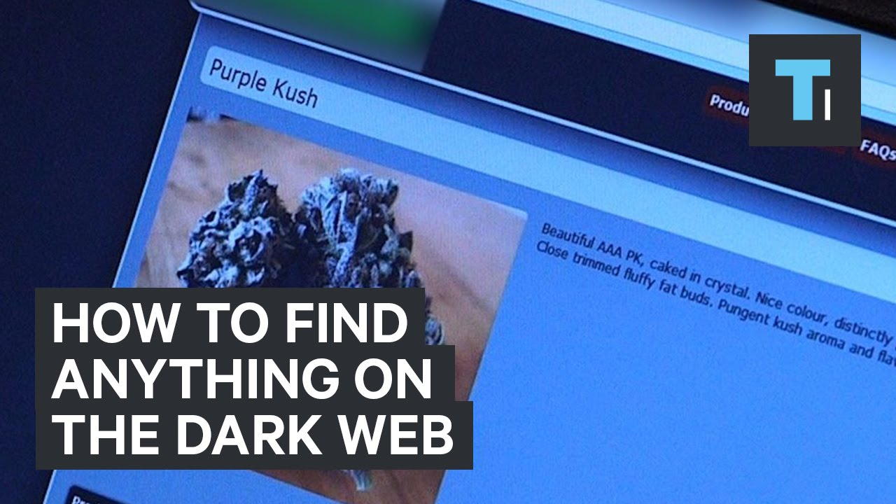 How to find anything on the dark web [video]
