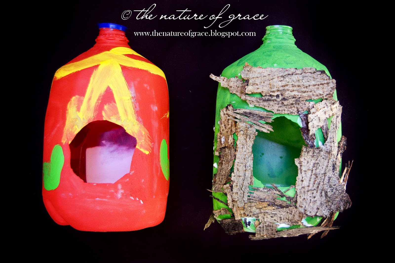 The Nature Of Grace Homeschool Theme Of The Week Birds