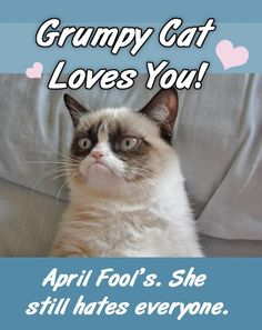 april fool day wishes