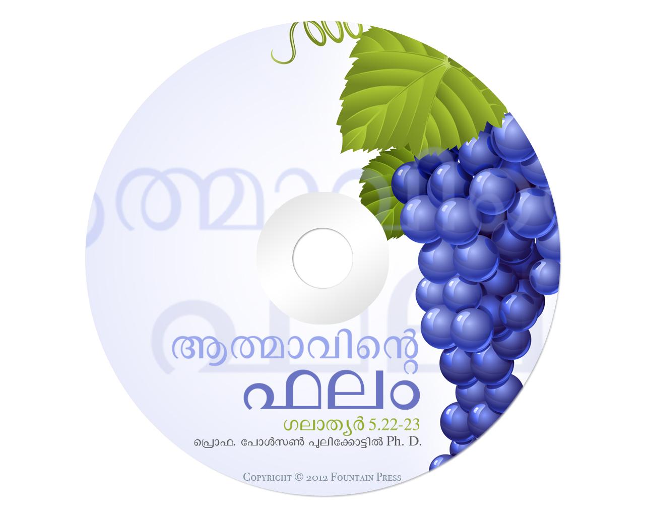 Paulson Post: CD/DVD