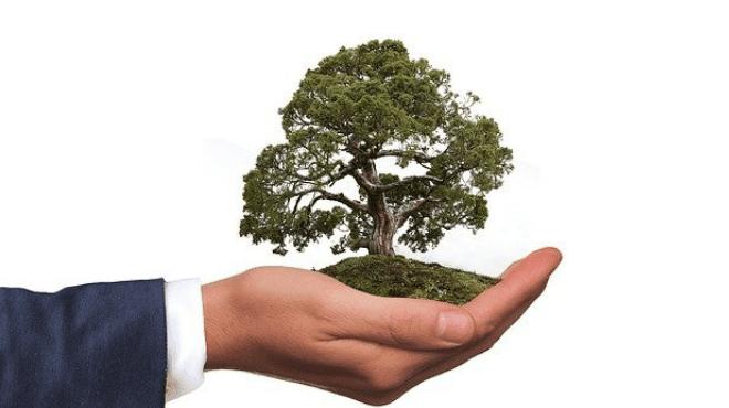 पर्यावरण वाचवा चळवळ