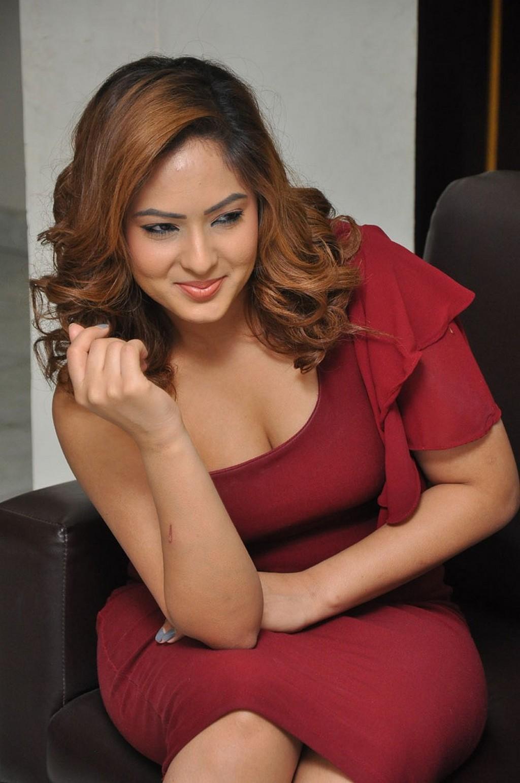 23fa78608f2 Nikesha Patel Hot Stills in Red Dress   truthinformations.blogspot.com