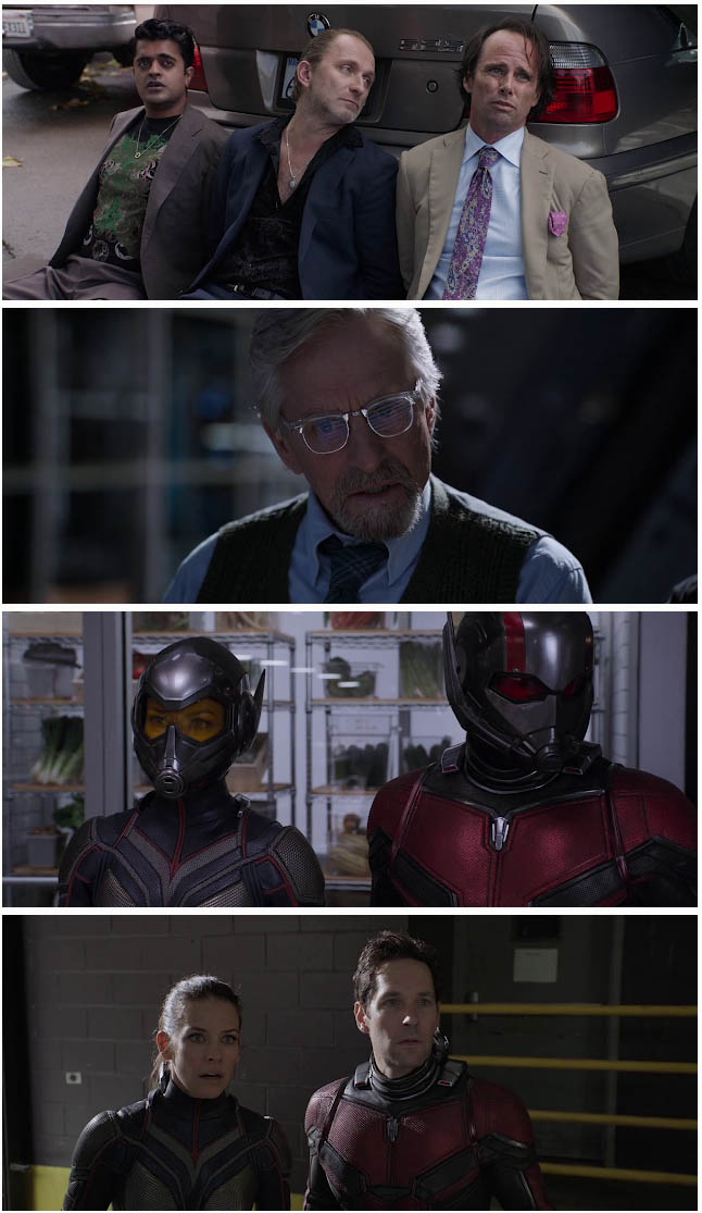 ant man 2 full movie in hindi download pagalworld