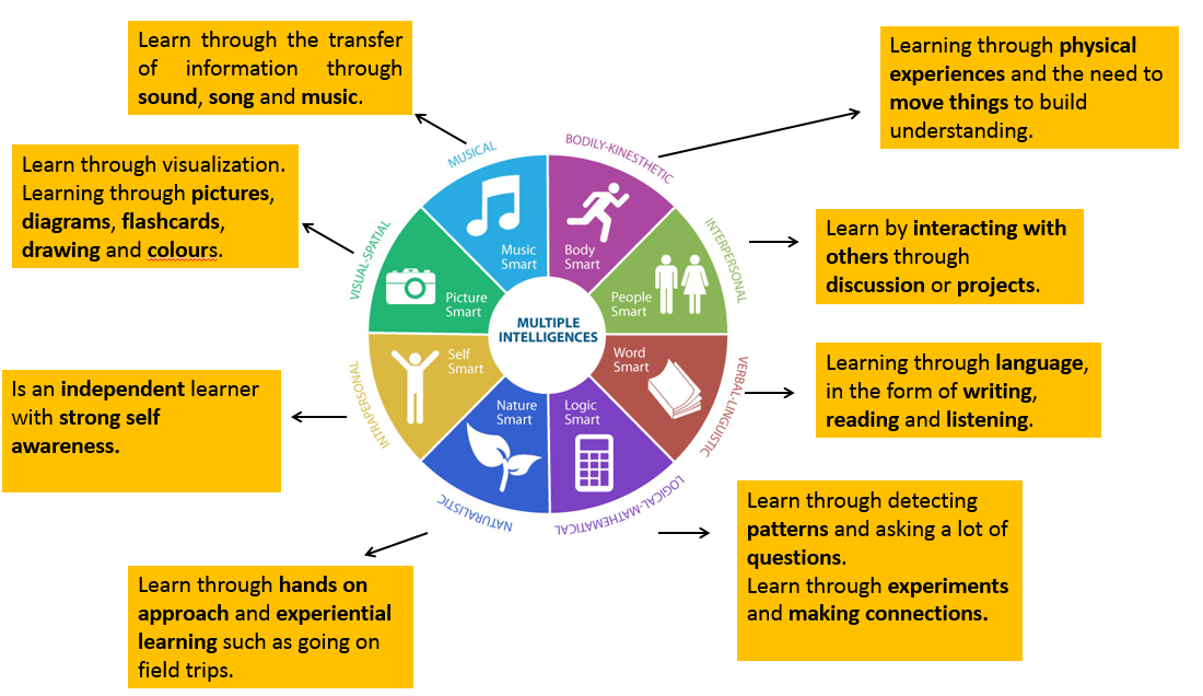 What Are Adult Learning Styles, and How Do They Affect eLearning?
