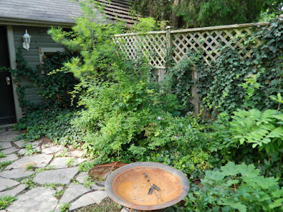 Leslieville Toronto Summer Backyard Garden Cleanup Before by Paul Jung Gardening Services--a Toronto Gardening Company