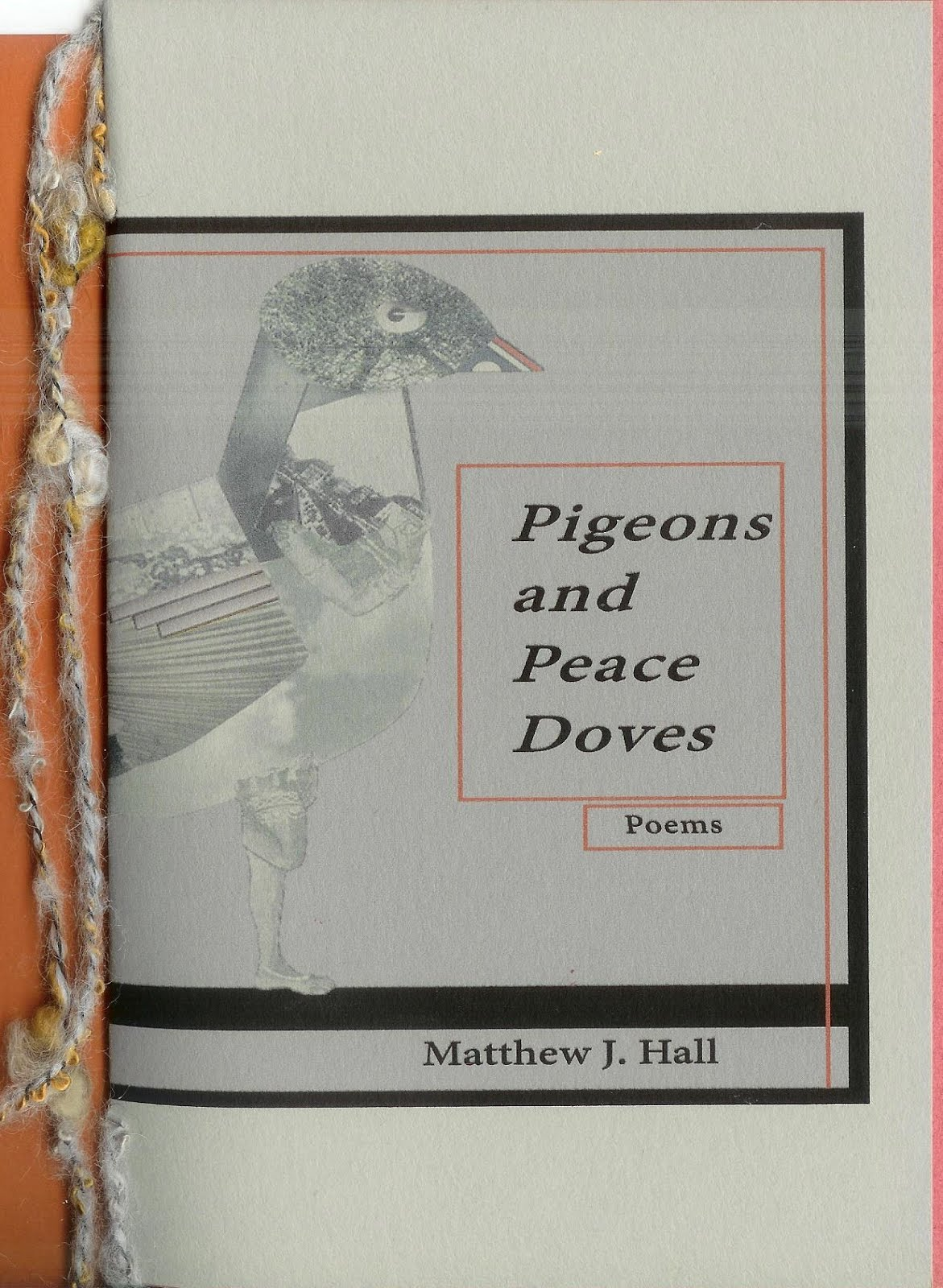 Pigeons and Peace Doves