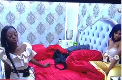 """#BBNaija: """"Khafi Is Trying To Migrate From A Wall Gecko To Agama Lizard"""" - Mercy"""