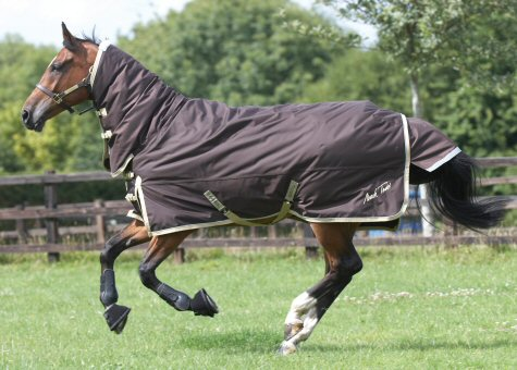 The Equestrian Blogger Winter Rugs From Tic Tac