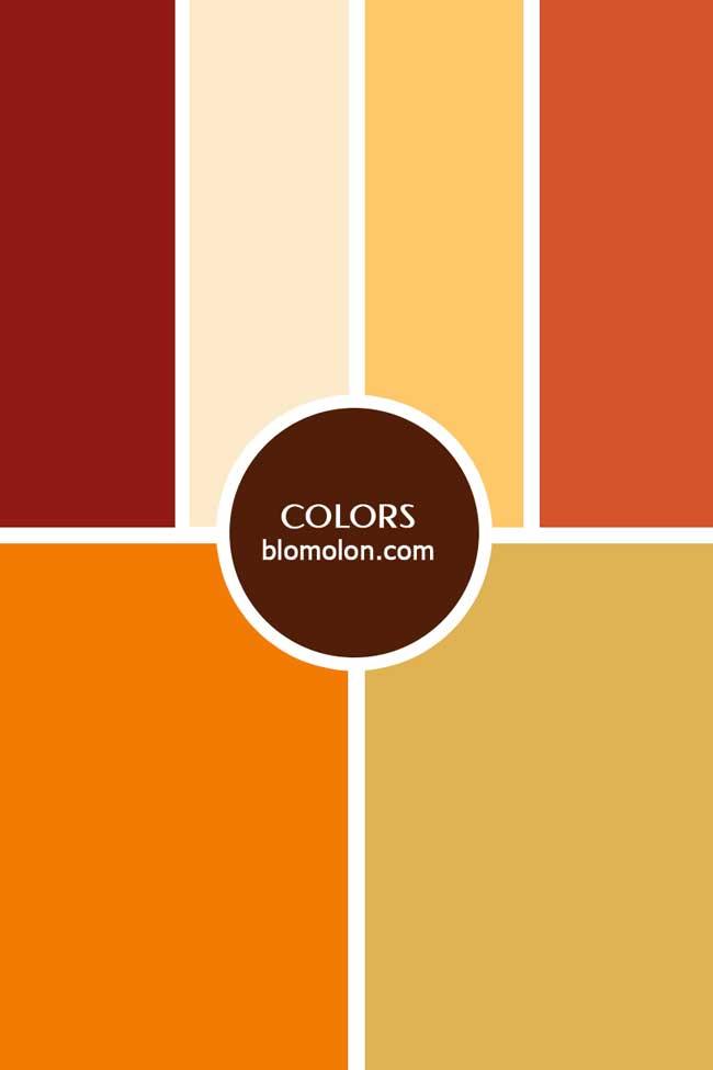 inspiracion_color_8