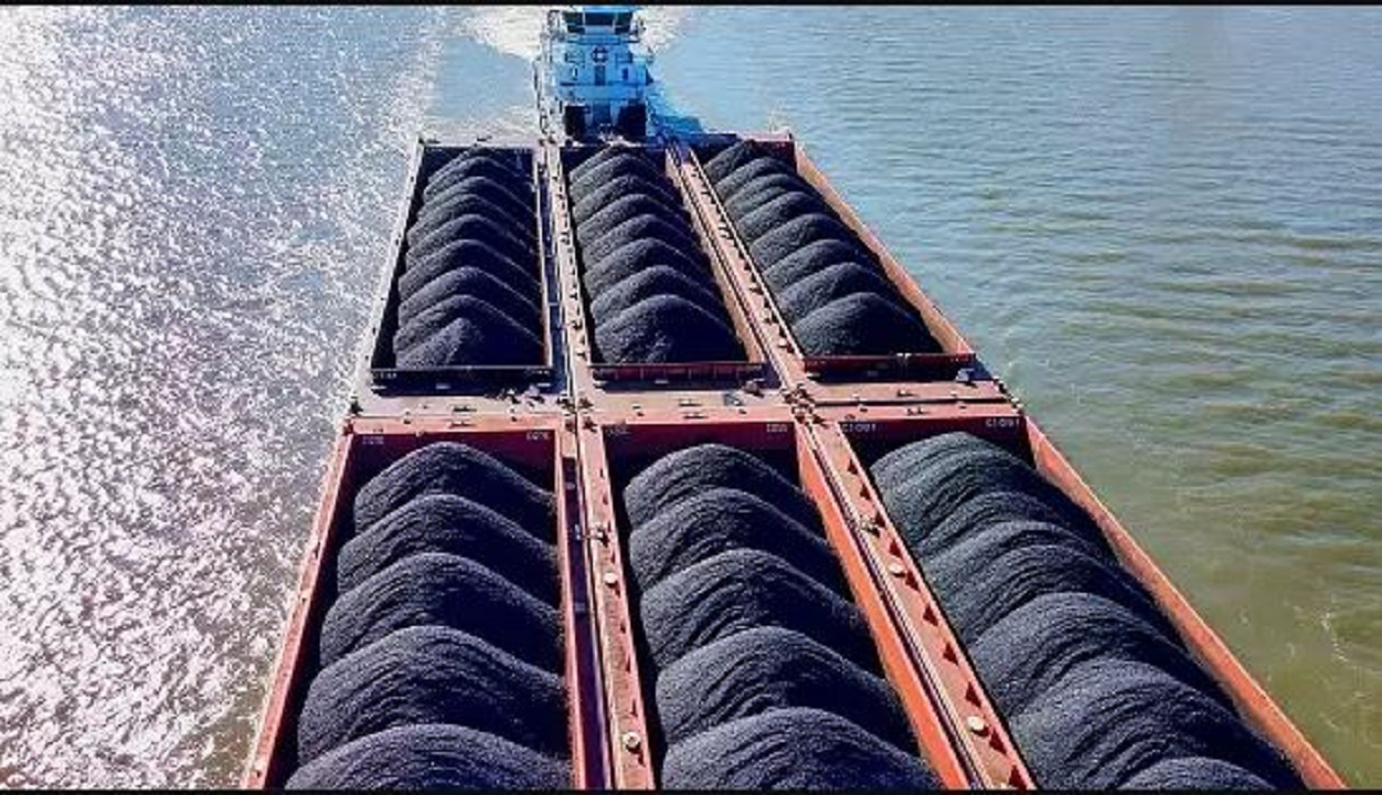 Coal imports fell 12% between April and January