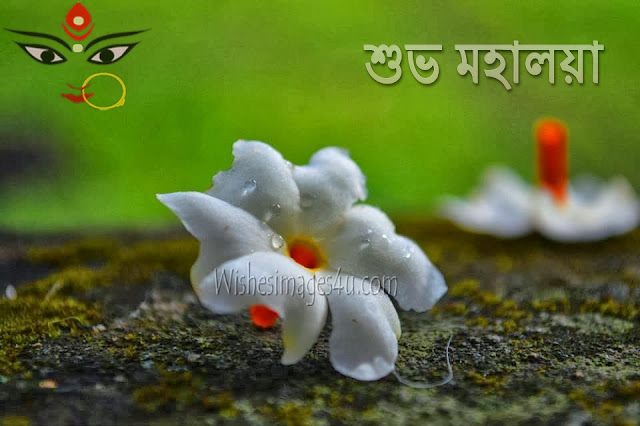 Subho Mohalaya 2018 Wallpaper With Bengali Words