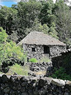 PORTUGAL / Quinta do Martelo, Ilha Terceira, Açores, Portugal