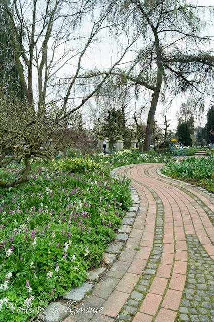Frühlingsbeet mit Storchschnabel und Tulpen im Kreislehrgarten