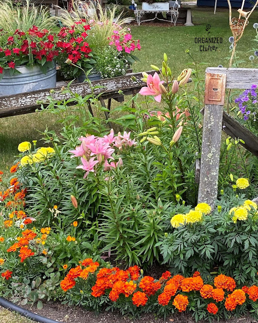 Photo of junk garden flower border