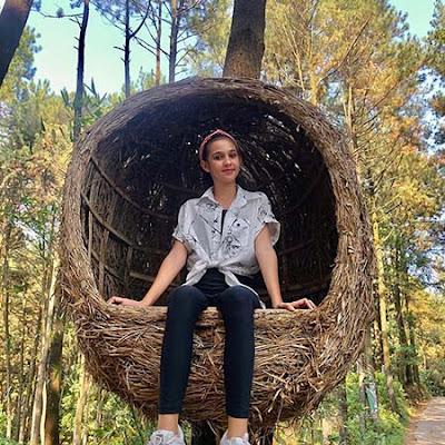 Gabriella Quinlyn di Hutan Pinus