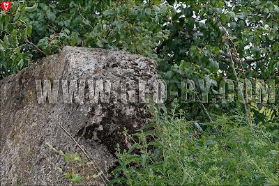 Польский бункер в Дарево-Чиж. Руины