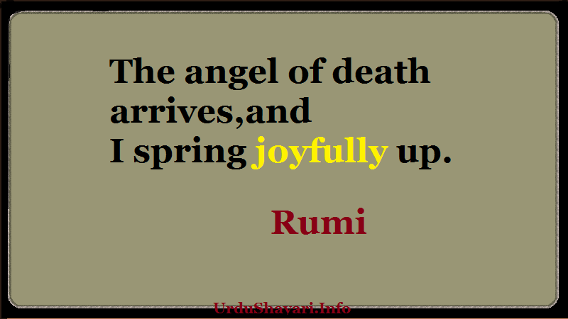 The angel of death arrives, and I spring joyfully up. rumi quotes on death