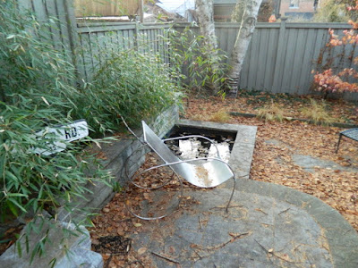 Cabbagetown Backyard Fall Cleanup Before by Paul Jung Gardening Services--a Toronto Gardening Services Company