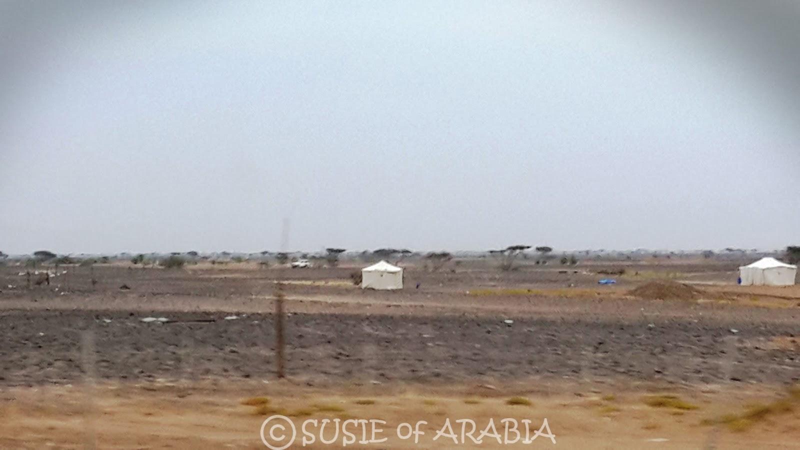 Saudi Arabia Desert Tents & Jeddah Daily Photo: Saudi Arabia Desert Tents