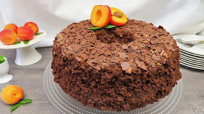 Kuglof Torta s Marelicama | Apricot Bundt Cake