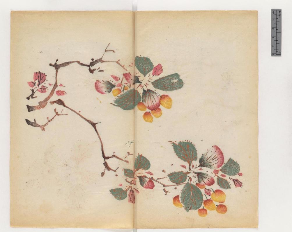 Το «Manual of Calligraphy and Painting» («Shi zhu zhai shu hua pu» στο  πρωτότυπο ή 20cf7535266