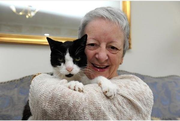 One Day This 'Maldita' Cat Began Bothering His 64-year-old Owner. She Then Realized That He Was Trying To Tell Her Something!