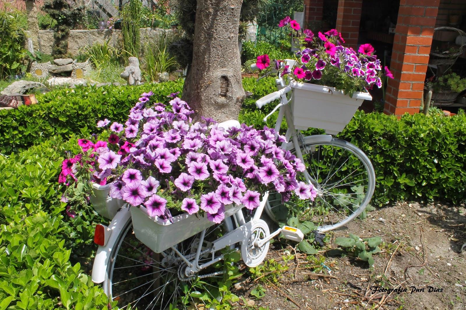 decora tu jardin vintage
