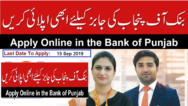 Manager Software Development, Software Developer, Product Manager Retail Banking / Loan Processing, Project Manager, Head core Banking Department,