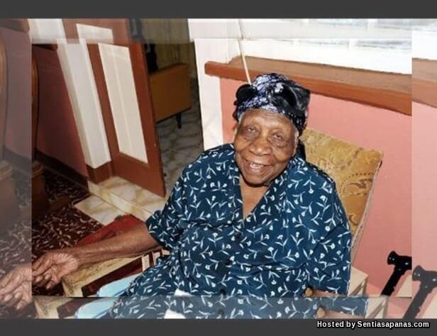 Violet Brown 117