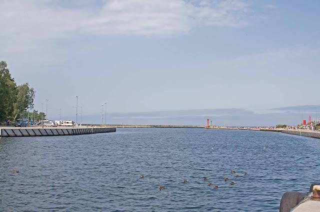 Mrzeżyno widok na port, pływające kaczki w porcie
