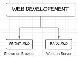 What is Web Developer? Web Developer Vs Web Designer
