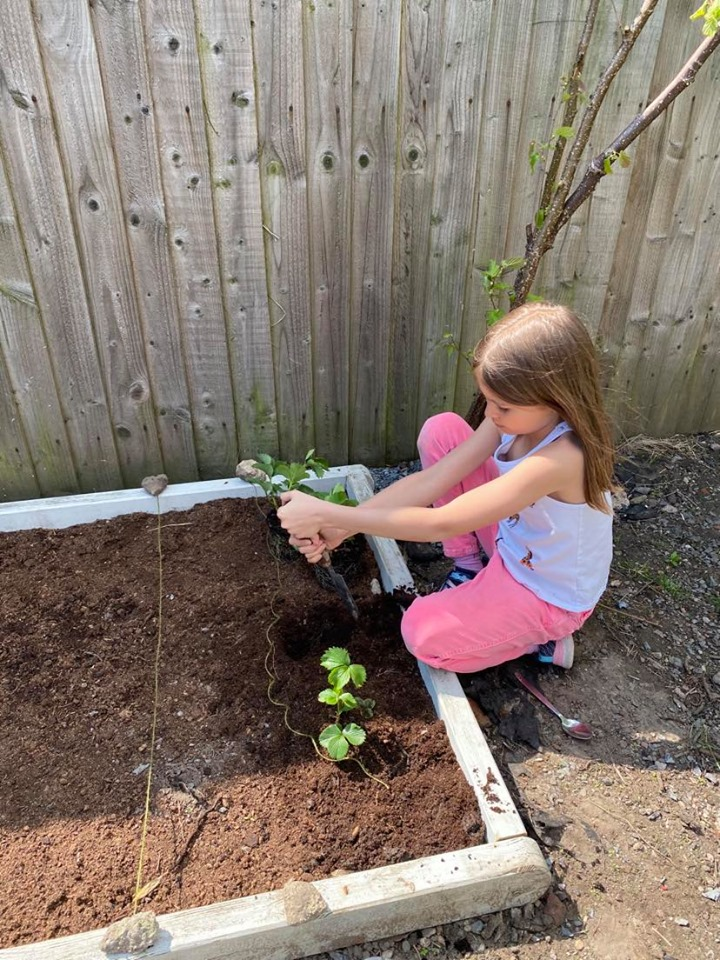 child building a vegetable patch
