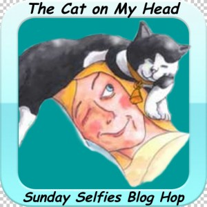 Cat On My Head