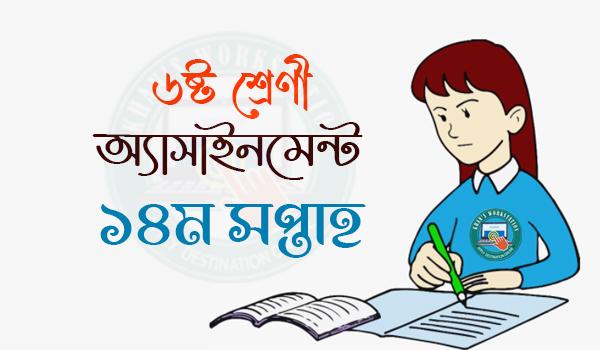 14th Week Class 6 Assignment 2021