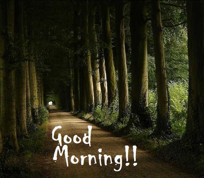 Lovely, Wonderful Good Morning Nature Message - Messages