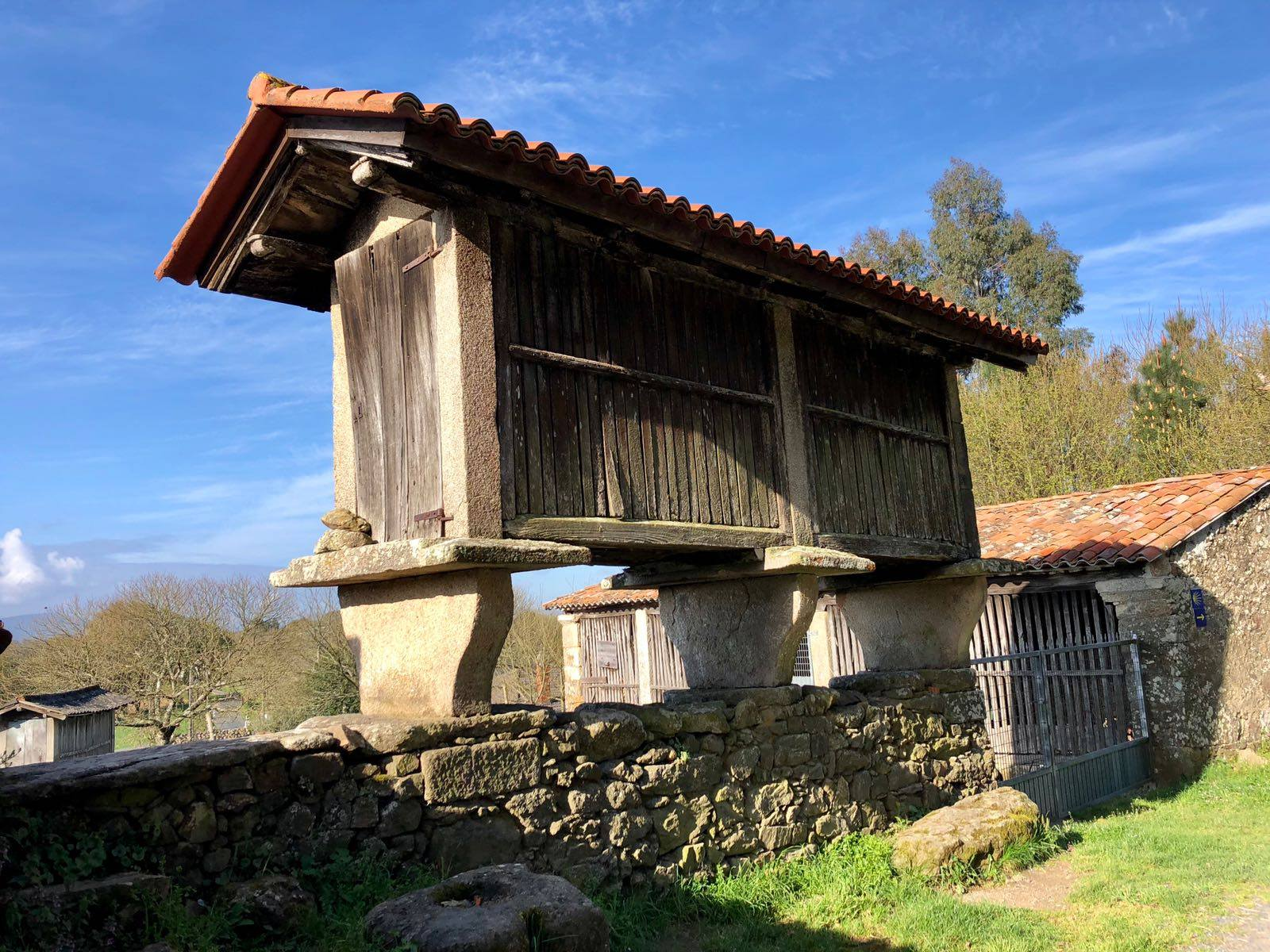 Hórreos are raised corn granaries that date back to the 15th century and can be seen throughout Galicia. Photo: © Authentic Journeys.