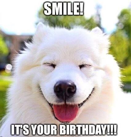 Happy Birthday dog Meme