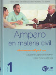AMPARO CIVIL