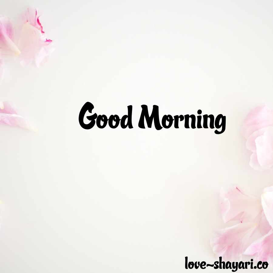 good morning nature photo