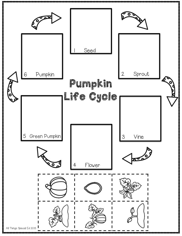 pumpkin life cycle coloring page - fall blog hop all things special ed