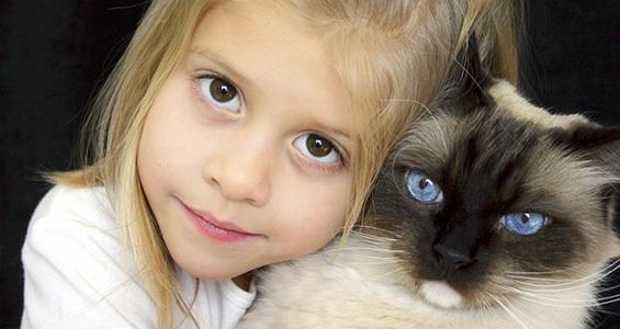 """""""رعاية القطط"""" """"رعاية القطط الصغيرة"""" """"رعاية القطط حديثة الولادة"""" """"رعاية القطط اليتيمه حديثة الولاده"""" """"رعاية القطط الصغيرة بعد الولادة"""" """"رعاية القطط بعد عملية التعقيم"""" """"رعاية القطط الضالة"""" """"رعاية القطط اليتيمة"""" """"رعاية القطط في المنام"""" """"رعاية قطط صغيرة"""" """"طريقة رعاية القطط الصغيرة"""" """"كيفية رعاية القطط الصغيرة"""" """"العاب رعاية القطط الصغيرة"""" """"العاب رعاية القطط والكلاب الصغيرة"""" """"رعاية قطة صغيرة"""" """"العاب رعاية قطط صغيرة"""" """"رعاية القطط حديثي الولادة"""" """"كيفية رعاية القطط حديثة الولادة"""" """"تربية القطط حديثة الولادة"""" """"تربية قطط حديثة الولادة"""" """"تربية القطط الحديثة الولادة"""" """"تربية القطط حديثي الولادة"""" """"رعاية القطط بعد الولادة"""" """"كيفية رعاية القطط اليتيمة"""" """"تربية القطط اليتيمة"""" """"تربية القطط في المنام"""" """"تربية القطط في المنام للعزباء"""" """"تربية القطط في الحلم"""" """"تفسير تربية القطط في المنام"""" """"رؤية تربية القطط في المنام"""" """"تربية القطط الصغيرة في المنام"""" """"معنى تربية القطط في المنام"""" """"طريقة تربية القطط الصغيرة"""" """"طريقة تربية القطط الصغيرة في المنزل"""" """"طرق تربية القطط الصغيرة"""" """"كيفية تربية القطط الصغيرة حديثة الولادة"""" """"كيفية تربية القطط الصغيرة"""" """"كيفية تربية القطط الصغيرة في المنزل"""" """"كيفية تربية القطط الصغيرة على الحمام"""" """"كيفية تربية القطط الصغيرة المنزلية"""" """"كيفية تربية القطط الصغيرة جدا"""" """"العاب رعاية القطة انجيلا الصغيرة"""" """"العاب رعاية القطط"""" """"العاب تربية القطط الصغيرة البيضاء"""" """"العاب تربية قطط صغيرة"""" """"العاب تربية الكلاب والقطط الصغيرة"""""""