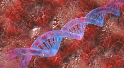 THALASEMIA KELAINAN GENETIK YANG PERLU DIWASPADAI