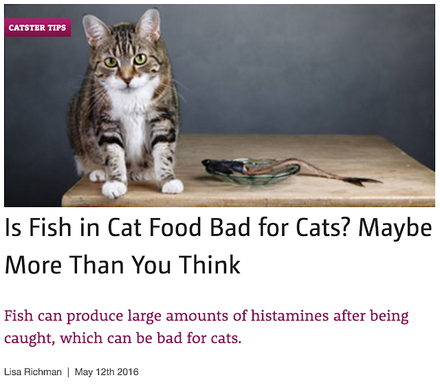 http://www.catster.com/lifestyle/is-fish-in-cat-food-bad-for-cats-maybe-more-than-you-think
