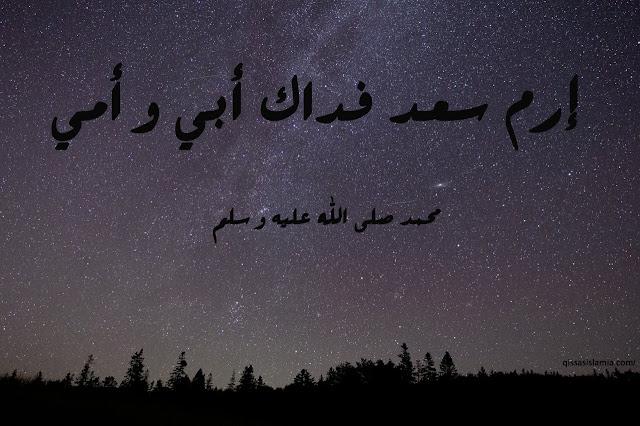سعد بن أبي وقاص رضي الله عنه