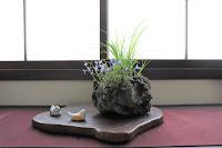 軽石鉢にヒナソウとナキリスゲとカワラナデシコが寄せ植えされた山野草の盆栽