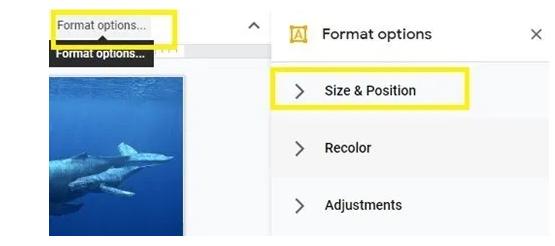 Cara Mudah Membuat Foto Kolase di Google Slide 7